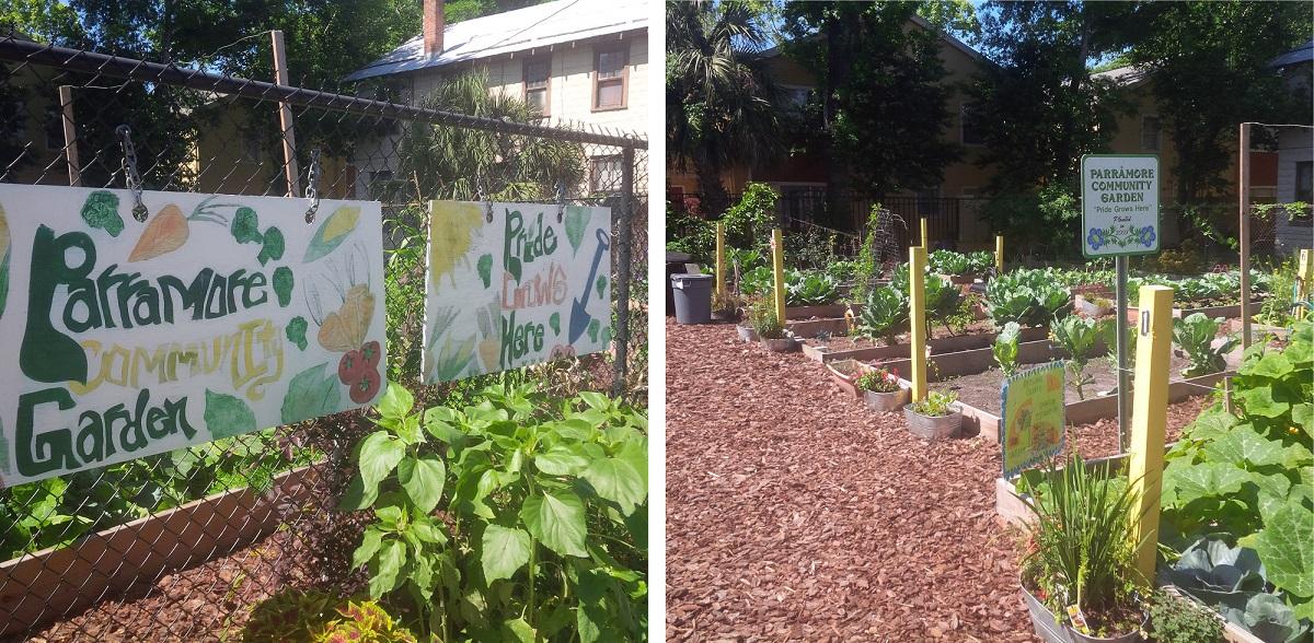 Parramore community garden 1