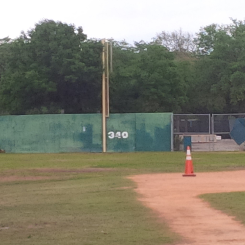 Tinker Field's wall in bad shape. (photo by Mike Cantone ©)