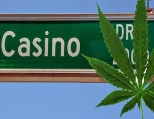 casino medical marijuana1